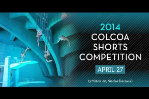 City of Lights, City of Angels 2014 (COLCOA ) Short Film Competition